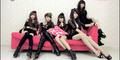 Alice Weiniang Group, Girlband Waria Saingan AKB48