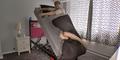 Solusi Susah Bangun Tidur, Kasur High Voltage Ejector Bed