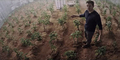 Terdampar, Matt Damon Jadi Ahli Botania di Trailer 'The Martian'