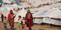 Bantu Pengungsi, Warga Hungaria Bikin Aplikasi Canggih