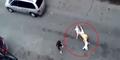 Ngeri, Pria ini Nyaris Tewas Diserang 2 Anjing Pit Bull