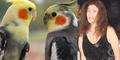 Wanita Tajir Wariskan Harta Rp 1,4 M Pada Burung Beo