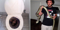 Musim Kering, Ular 3 Meter Masuk Toilet Warga Australia