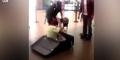 Ngumpet di Koper, Pria Peru Dipergoki Anjing Pelacak