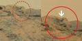 Pemburu UFO Temukan Patung Budha di Mars