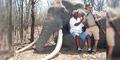 Turis Jerman Tembak Gajah Terbesar di Zimbabwe Gantian Diburu