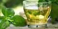 10 Khasiat Ampuh Teh Hijau Bagi Kesehatan Tubuh