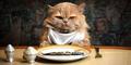 Alasan & Penyebab Kucing Tidak Boleh Mengonsumsi Makanan Manusia