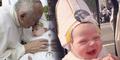Tumor Ganas Bayi Gianna Sembuh Berkat Dikecup Paus
