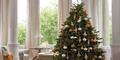 Awas, Pohon Natal Tiruan Bikin Iritasi!