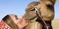 Cemburu Istri Cium Unta, Suami di Saudi Talak Cerai