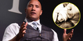 Jasmine, Nama Bayi Perempuan Dwayne 'The Rock' Johnson