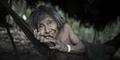 Potret Kehidupan Suku Awa, Menyusui Hewan Liar