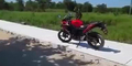 Rebutan Honda CBR, Biker Baku Hantam Sama Monyet