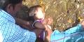 Ritual Kesehatan Bocah India: Berguling di Kotoran Sapi