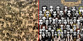 4 Gambar Mencari Panda Paling Populer Di Awal Tahun 2016