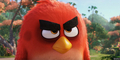 Aksi Kocak Red Si Burung Pemarah di Trailer The Angry Birds Movie