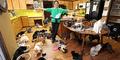 Keren, Wanita Ini Pelihara 1.100 Kucing di Rumahnya