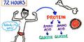 Video: Ngeri, Begini Kondisi Tubuh Jika Berhenti Makan!