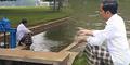 Hobi Syahdu Jokowi: Beri Makan Ikan di Sungai