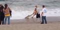 Pria Ini Tangkap Hiu dari Laut Untuk Selfie