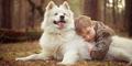 Studi: Anjing Terbukti Jadi Hewan Penyayang