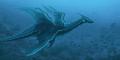 Ditemukan Fosil Naga Laut Berpembuluh di Polandia