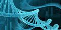 Ilmuwan Pakai DNA Manusia untuk Bikin Chip Super Cepat