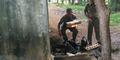 Polisi: Es Teh di Monas Tidak Ada Unsur  Air Limbah
