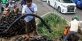 Terkuak! Inilah Pemilik Kabel Penyumbat Selokan di Jakarta