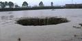 25 Ton Ikan Ludes Ditelan Lubang Raksasa Misterius di China