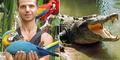 Bule Rusia Tewas Digigit Buaya di Raja Ampat - Papua