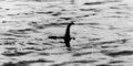 Ilmuwan Skotlandia Temukan Monster Loch Ness