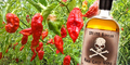 Naga Chili Vodka, Minuman Terpedas di Dunia