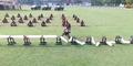 Video: Sertu Dwi Andi Pecahkan 55 Balok Es dengan Kepala Dalam 1 Menit