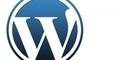 Setengah dari 100 Website Paling Populer Gunakan Wordpress