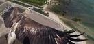19 Foto Drone Terbaik 2014