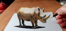 Lukisan 3D Karya Ramon Bruin Terlihat Hidup!