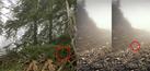 Foto Kamuflase Sniper Menyatu dengan Alam
