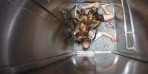 Mutant Giant Spider Dog - Video Terbanyak Ditonton di YouTube 2014