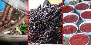 7 Makanan Aneh Di Dunia