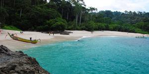 Teluk Hijau Banyuwangi - 7 Pantai di Jawa Timur ini Cocok Jadi Destinasi Unggulan