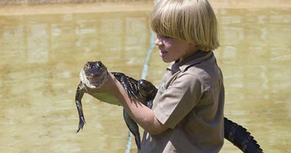 Foto Putra Steve Irwin Jinakkan Buaya Di Usia 10 Tahun 4